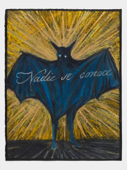 Nadie se conoce, 2017. Lápiz graso y pastel sobre papel. 62,5 x 47,9 cm