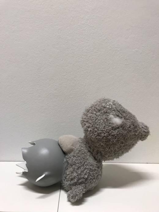 Preferencia inexplicable, 2017, oso de peluche + jarrón, 45 x 30 cm. Cortesía Ana Prada y Galería Helga de Alvear.
