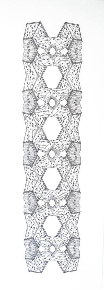 Transformada discreta. Rallador de queso, 2017, Ink on paper, 111,5 x 47 cm. Cortesía Ana Prada y Galería Helga de Alvear.