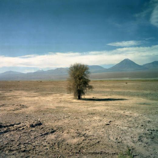 After Us (Nr. 3), 2005. LightJet Print. 72,5 x 72,5 cm. Ed. 1/6 + 2AP